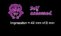 3 In 1 Stamper: Self Assessed