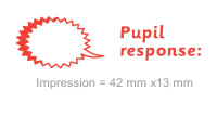 3 In 1 Stamper: Pupil Response