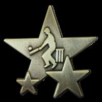 Badge: Cricket Star - Metal