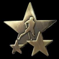 Badge: Hockey Star - Metal