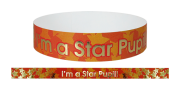 Wristband: I`m A Star Pupil Foil