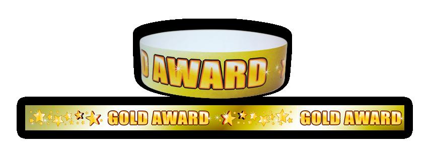 Wristband: Gold Award