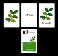 Games: La nature Card  Pack
