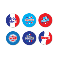 French Praise Words Mini Stickers