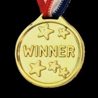 Plastic Winners Medal