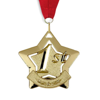 Medal: 1st Place - Gold Star