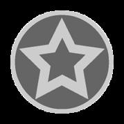 Sticker: Silver Star - Embossed