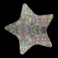 Sparkling Sticker: Sparkling Silver Star Midi Stickers