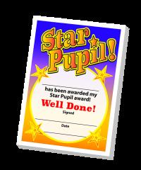 Notepad: Star Pupil Teacher Quick Notepad