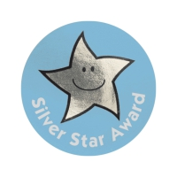 Silver Star Award Metallic Star Stickers (38mm)