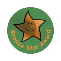 Bronze Star Award Metallic Star Stickers (38mm) (60 Stickers)