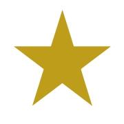 Stick Star Stamper: Gold (6mm)